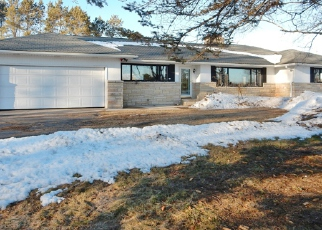 Foreclosed Home en COUNTY ROAD 98, Mc Millan, MI - 49853