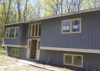 Foreclosure Home in Emmet county, MI ID: F3992377