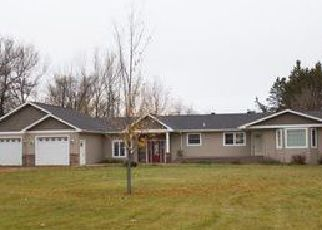 Foreclosure Home in Polk county, MN ID: F4076232