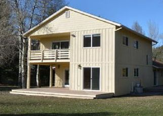 Casa en ejecución hipotecaria in Hailey, ID, 83333,  N CREEK LN ID: F4089217