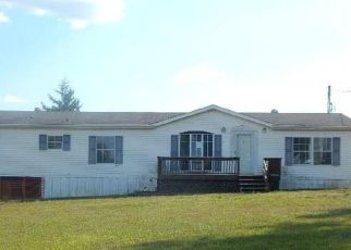Foreclosure Home in Washington county, MO ID: F4090649