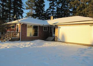 Foreclosure Home in Saint Louis county, MN ID: F4092188