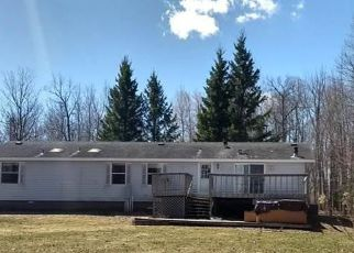 Foreclosure Home in Carlton county, MN ID: F4102273