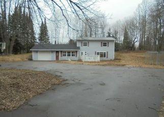 Casa en ejecución hipotecaria in Sawyer Condado, WI ID: F4120833