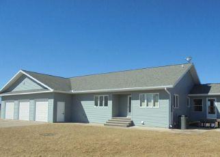 Foreclosed Home en CAMP DANIEL TRL, Danbury, WI - 54830