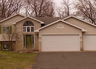 Foreclosure Home in Chisago county, MN ID: F4135830