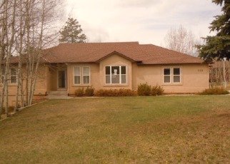 Casa en ejecución hipotecaria in Woodland Park, CO, 80863,  REGENT LN ID: F4138353