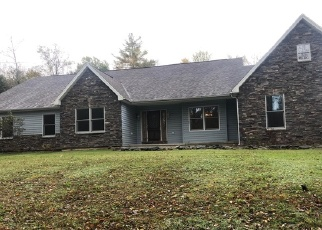 Foreclosed Home en PINE GROVE RD, Gouldsboro, PA - 18424