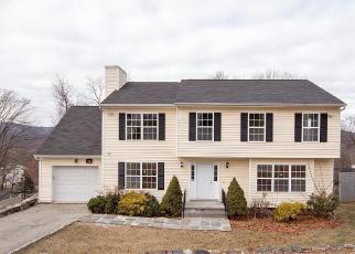 Foreclosed Home in BUENA VISTA AVE, Peekskill, NY - 10566