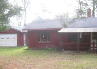 Foreclosure Home in Ogemaw county, MI ID: F4160822