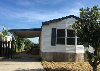 Foreclosure Home in Laredo, TX, 78043,  CEREUS CT ID: F4195864