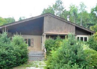 Casa en ejecución hipotecaria in Deposit, NY, 13754,  MARSH POND RD ID: F4208840