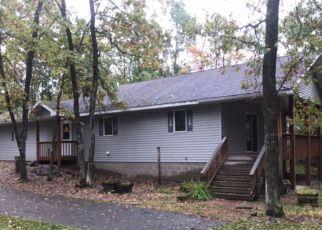 Casa en ejecución hipotecaria in Crow Wing Condado, MN ID: F4212742