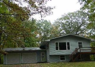Casa en ejecución hipotecaria in Polk Condado, WI ID: F4213400