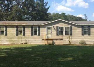 Casa en ejecución hipotecaria in Jackson Condado, FL ID: F4213912