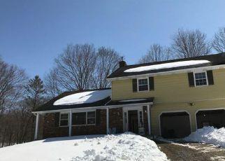 Casa en ejecución hipotecaria in Salt Point, NY, 12578,  AUDUBON TRL ID: F4223666