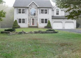 Casa en ejecución hipotecaria in Kunkletown, PA, 18058,  MERIWILL LN ID: F4239185