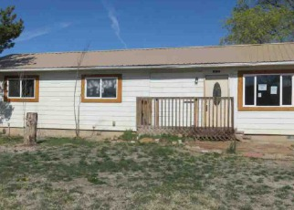 Casa en ejecución hipotecaria in Fruita, CO, 81521,  N MULBERRY ST ID: F4242697