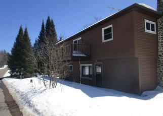 Foreclosed Home en S SHORE DR, Pickerel, WI - 54465