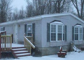 Casa en ejecución hipotecaria in Newaygo Condado, MI ID: F4246705