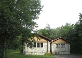Casa en ejecución hipotecaria in Livingston Manor, NY, 12758,  FOX MOUNTAIN RD ID: F4250713