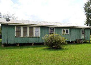 Foreclosure Home in Vermilion county, LA ID: F4251407