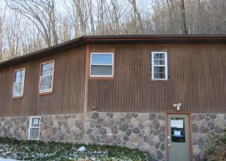 Foreclosed Home en WOODCOCK MTN RD, Washingtonville, NY - 10992