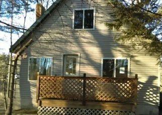 Casa en ejecución hipotecaria in Wexford Condado, MI ID: F4259868