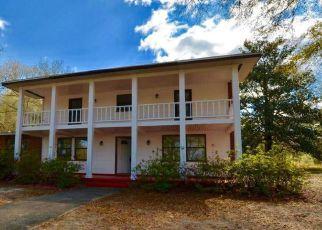 Foreclosure Home in Walton county, FL ID: F4259946