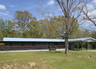 Foreclosure Home in Dale county, AL ID: F4262103