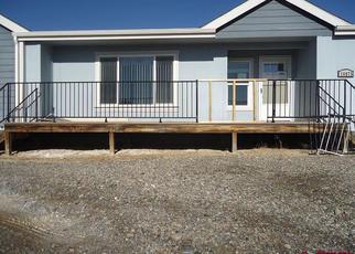 Foreclosure Home in Delta county, CO ID: F4262790