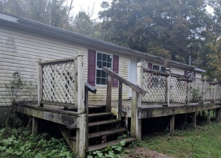 Foreclosure Home in Belmont county, OH ID: F4265215