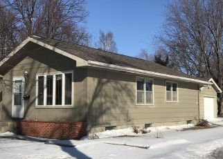 Foreclosure Home in Lyon county, MN ID: F4268356