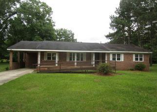 Casa en ejecución hipotecaria in Georgetown, SC, 29440,  LANES CREEK DR ID: F4271351