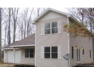 Casa en ejecución hipotecaria in Emmet Condado, MI ID: F4272449