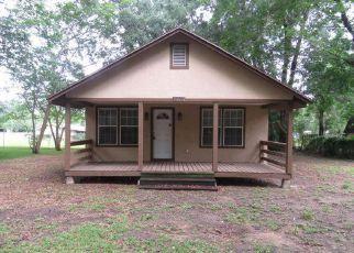 Casa en ejecución hipotecaria in Ocala, FL, 34470,  NE 17TH AVE ID: F4274729