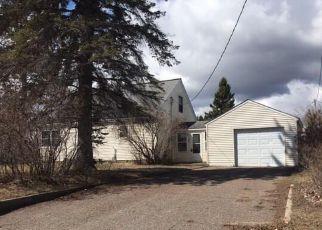 Casa en ejecución hipotecaria in Cass Condado, MN ID: F4275800