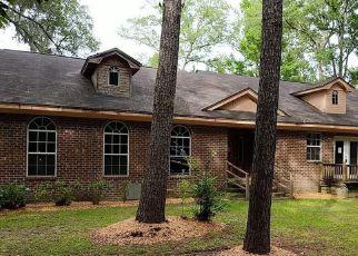 Foreclosure Home in Effingham county, GA ID: F4277413