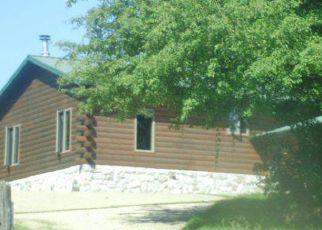 Casa en ejecución hipotecaria in Otter Tail Condado, MN ID: F4277707