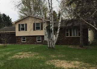 Foreclosure Home in Dunn county, WI ID: F4277804