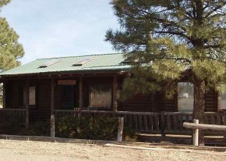 Foreclosed Home en AIR LOCK RD, Las Vegas, NM - 87701