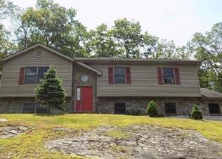 Foreclosed Home en SUMMERTON CIR, East Stroudsburg, PA - 18301