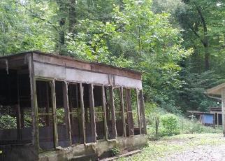 Foreclosed Home in LLOYDS CHAPEL RD, Mount Carmel, TN - 37645