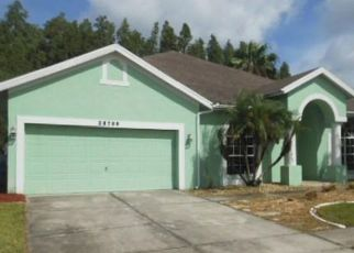 Foreclosed Home in FALLING LEAVES WAY, Wesley Chapel, FL - 33543