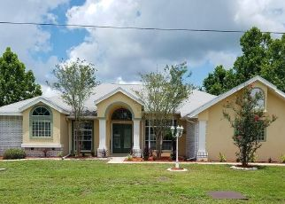 Foreclosed Home en W PAUL BRYANT DR, Crystal River, FL - 34429
