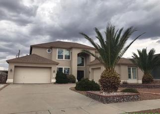 Foreclosure Home in El Paso county, TX ID: F4289981