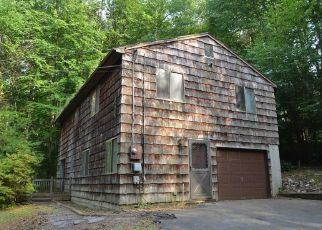 Foreclosed Home in LAKEVIEW TER, Sandy Hook, CT - 06482