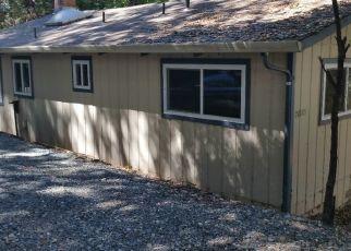 Foreclosed Home in TELLURIUM DR, Pine Grove, CA - 95665