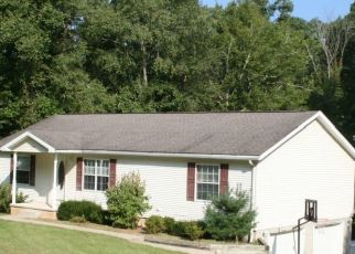 Foreclosure Home in Athens county, OH ID: F4293842