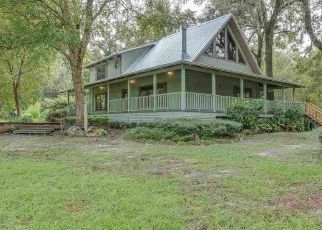 Foreclosed Home en SW RIVER RISE CT, Fort White, FL - 32038
